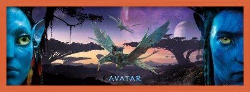 Póster  Avatar limited ed. - landscape