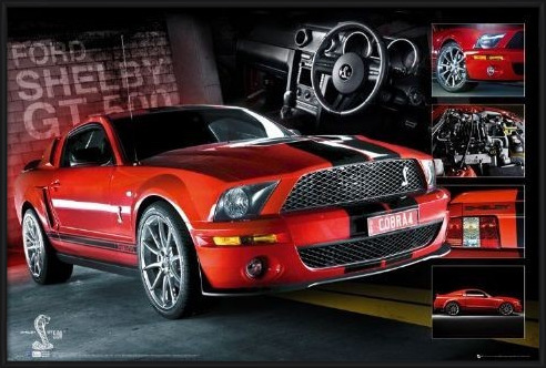 Póster  Red Mustang