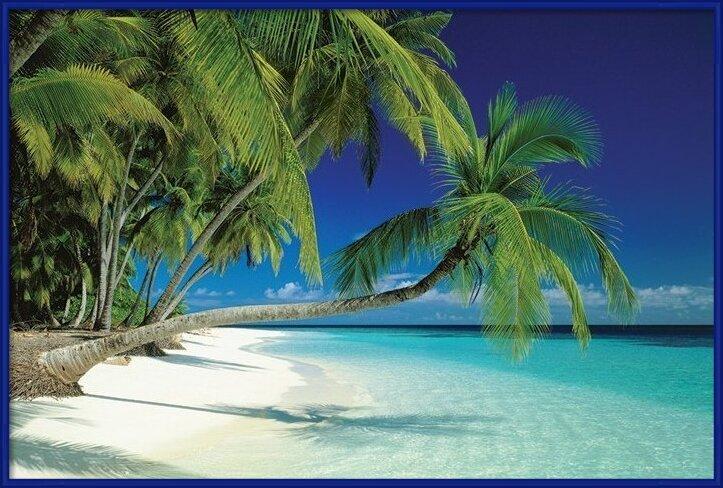Póster  Maledives