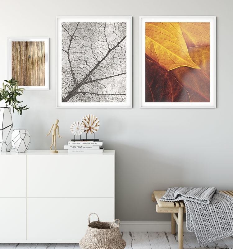 Arte fotográfico Leaves