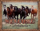 WELCOME - HORSES - Friends
