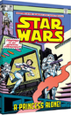 Star Wars - A Princess Alone