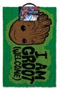 Guardianes de la Galaxia - I am Groot - Welcome