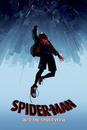 Spider-Man: Un Nuevo Universo - Fall